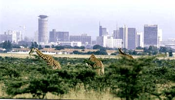 Holidays in Nairobi, the Real Trio Adventure
