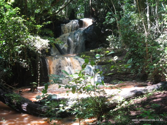 karura-waterfalls