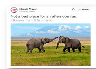 Interpid travel pic twitter