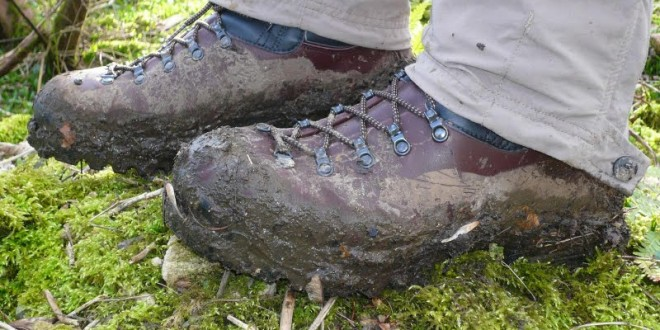 Discover The Camping And Hiking Gear Suitable For Kenya Kenyatalii